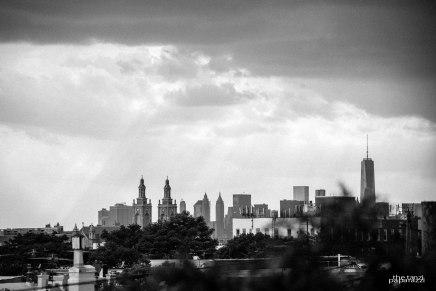 tanzi-paparazzi-city-that-never-sleeps